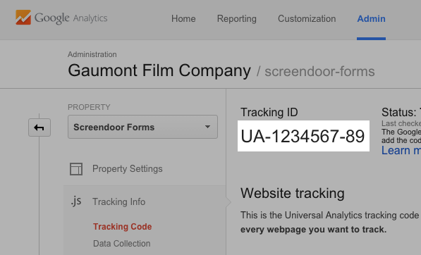 Your Google Analytics tracking code.